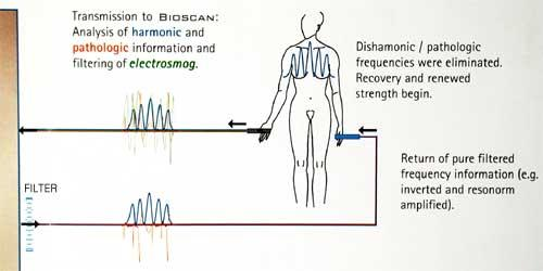 bioscan resonance hookup (1)