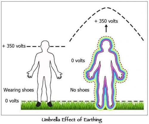 earthed energy field