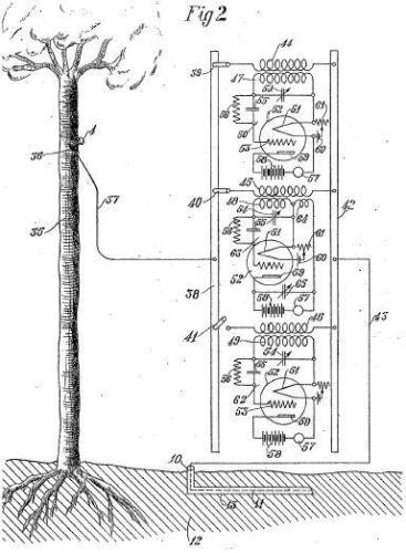 tree antenna receiver (1)